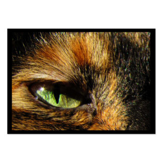 Cat's Eye ATC Pack Of Chubby Business Cards