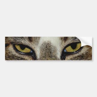 Cat's eye bumper sticker