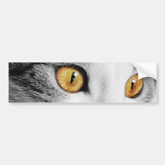 Cat's Eye Bumper Stickers