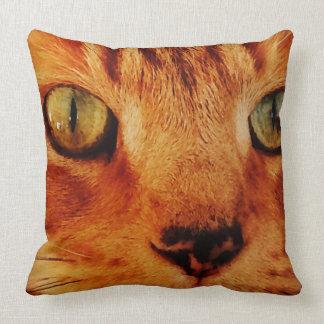 Cats Eye Cushion