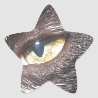 cat's eye sticker