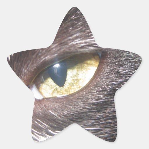 cat's eye sticker