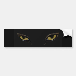 Cat's Eyes Bumper Sticker Car Bumper Sticker