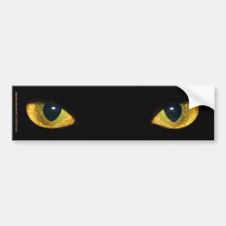 CAT'S EYES BUMPER STICKER