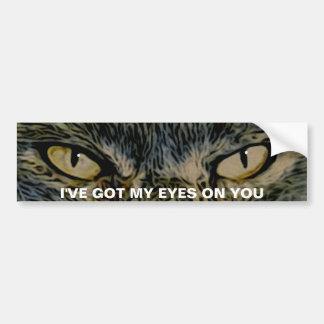 Cat's Eyes Bumper Sticker Bumper Stickers