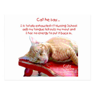 Cats for Nursing Students - Exhausted Post Cards