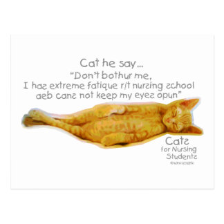 Cats for Nursing Students - Extreme Fatigue Post Cards