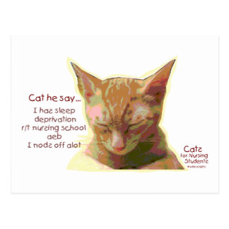 Cats for Nursing Students - Sleep Deprivation Postcard