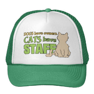 CATS HAVE STAFF hats
