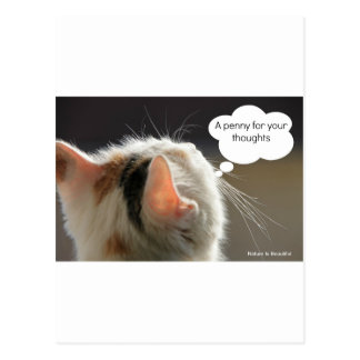 Cats-Head_Penny for your thoughts Post Cards
