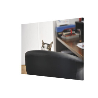 Cat's head showing of an office chair, nearby canvas print