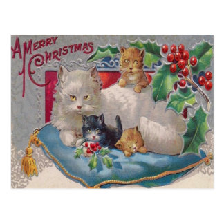 Cats & Holly Postcard