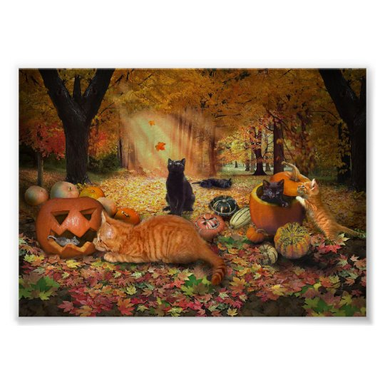 Cats in Autumn Poster