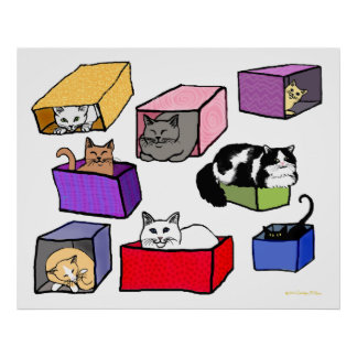 Cats in Colorful Boxes Poster
