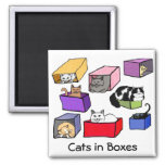 Cats in Colourful Boxes Magnet