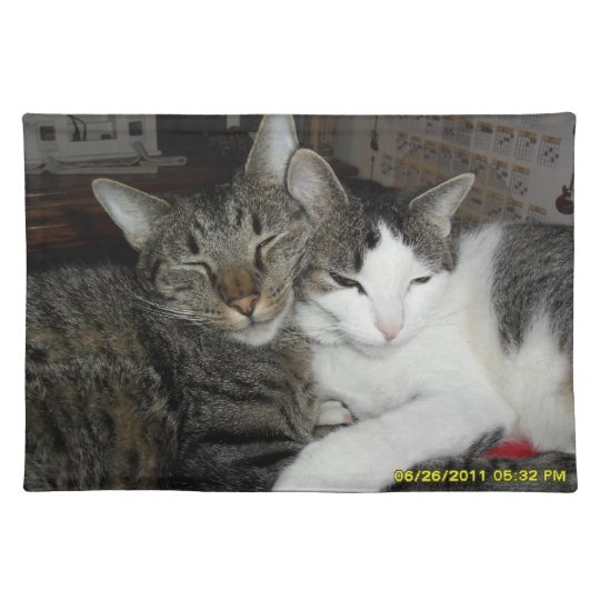 cats in love place mat