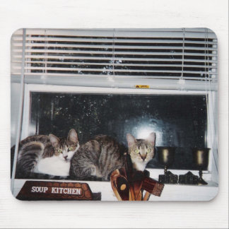 Cats in the Kitchen Window Mouse Mat