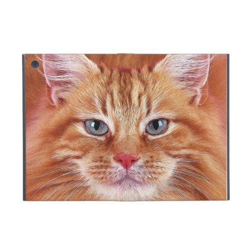 cats case for iPad mini