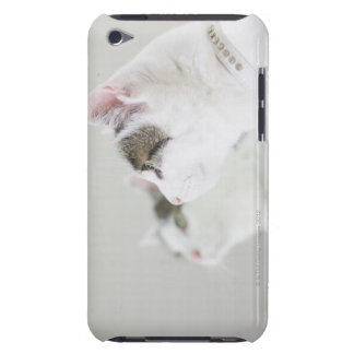 Cats iPod Touch Cover