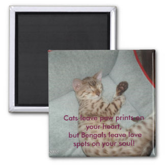 Cats leave paw prints on your heart, but... square magnet