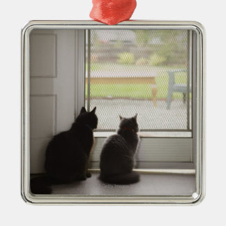 Cats looking out screen door Silver-Colored square decoration