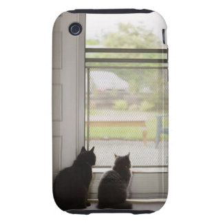 Cats looking out screen door tough iPhone 3 cover
