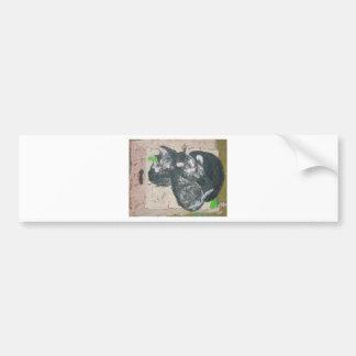cats - mowglie pip and cleo.jpg bumper sticker
