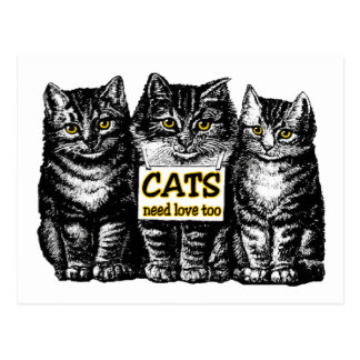 Cats Need Love Post Card