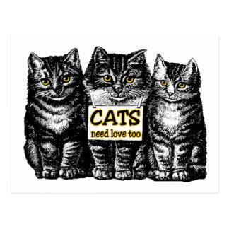 Cats Need Love Postcard