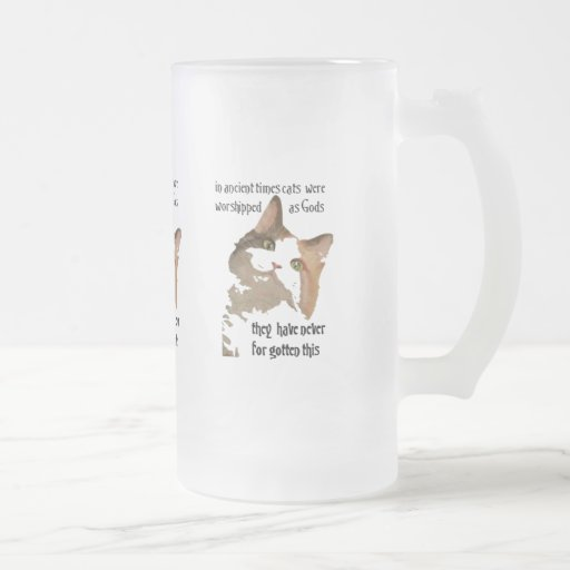 Cats Never Forget Frosted Glass Mug