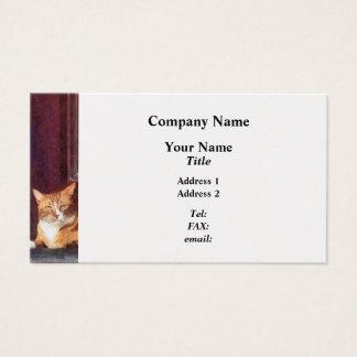 Cats - Orange Tabby in Doorway