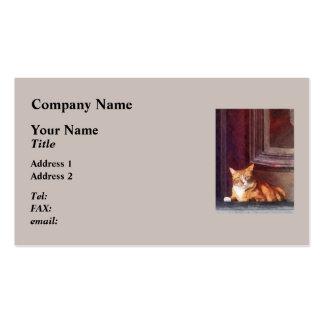 Cats - Orange Tabby in Doorway Pack Of Standard Business Cards