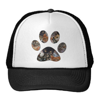Cats Paw Trucker Hat