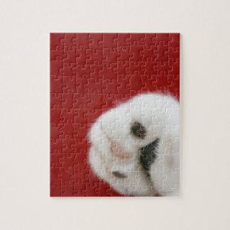 Cat's paw jigsaw puzzle