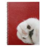 Cat's paw notebooks