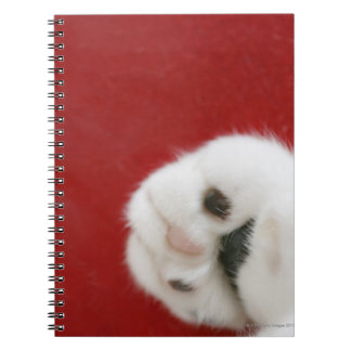 Cat's paw notebooks