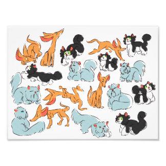 Cats! Photo