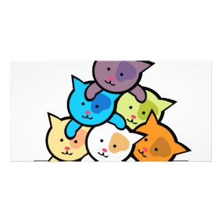 Cats Picture Card