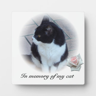 Cats Photo Plaques