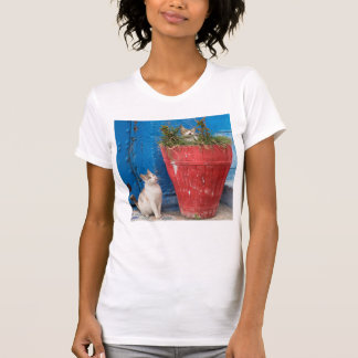 Cats playing around, Rabat, Morocco T-Shirt