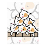 Cats Post Card