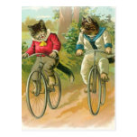 Cats Riding Bikes Post Card
