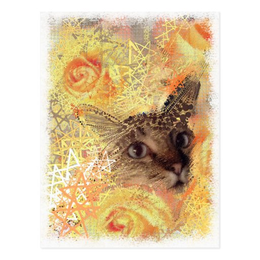 Cats roses stars christmas angels postcard