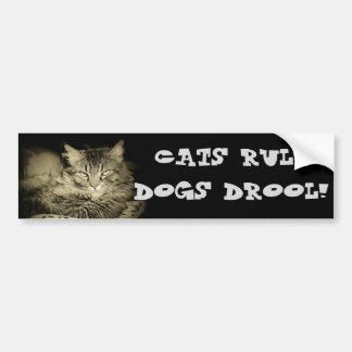 Cats rule Dogs Drool Bumper Cat Bumper Sticker