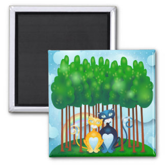Cats Square Magnet