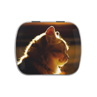 Cats Sunset Candy Tins