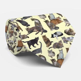 Cats Tie