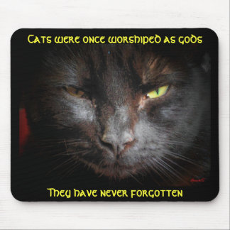 Cats Were Worshiped, They don't forget Mouse Pad