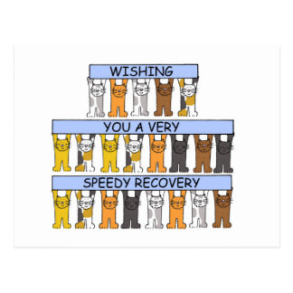 Cats Wishing you a Speedy Recovery Postcard