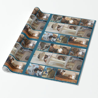 Cats Wrapping Paper